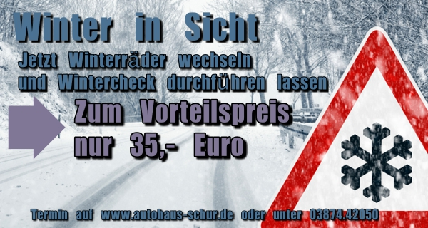 Winter, Radwechsel, Wintercheck